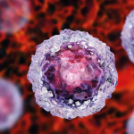 Investing in stem cells, the building blocks of the body